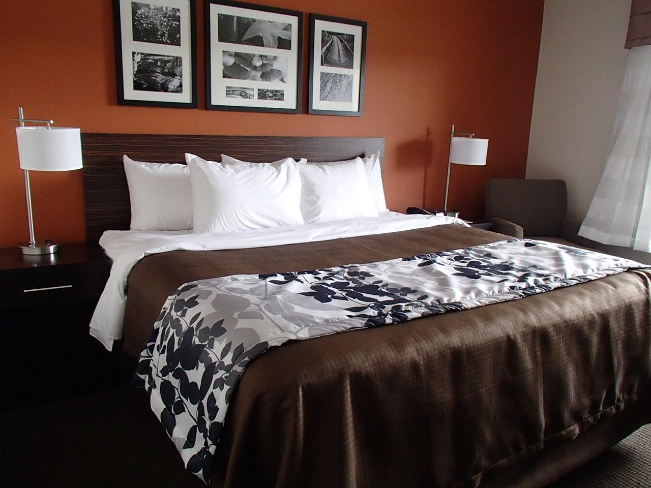 Sleep Inn Emerson Georgia king bed