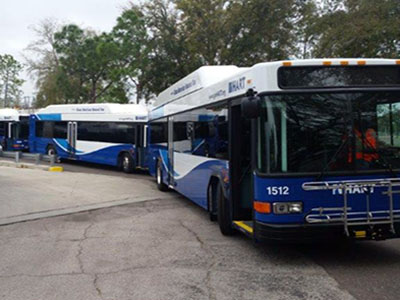 CNG Buses